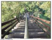 中央嶺森林步道:中央嶺森林步道 (14).jpg