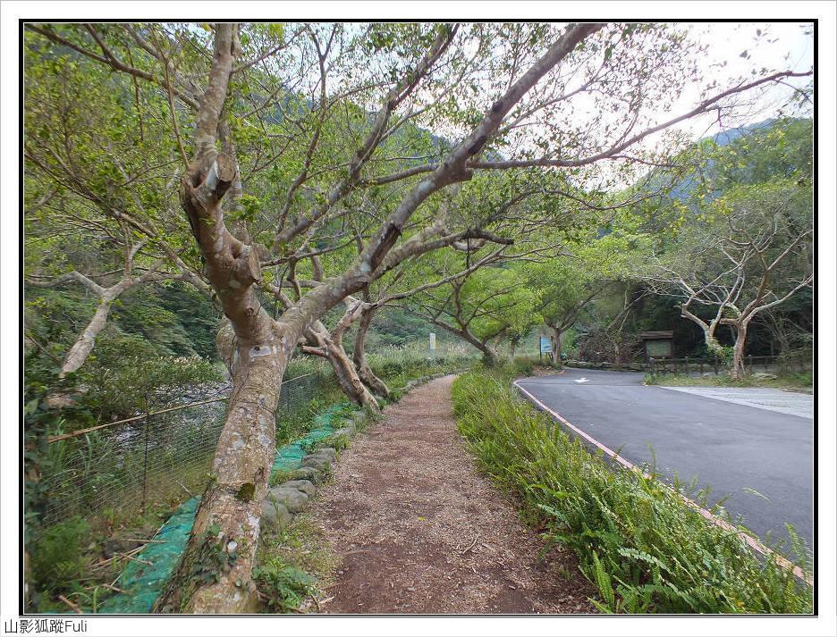 蚋仔溪步道:蚋仔溪步道 (15).jpg