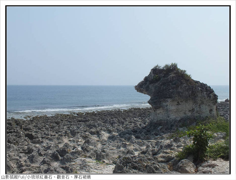 小琉球紅番石、觀音石、厚石裙礁:小琉球紅番石、觀音石、厚石裙礁 (5).jpg