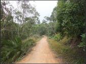 環保公園步道:環保公園 (13).jpg