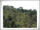 三角洲山北峰:飛鳳山 (1).jpg
