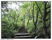 玉京山峭壁精靈:玉京山步道 (8).jpg
