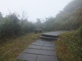 雨霧五分山:五分山稜線步道 (41).JPG