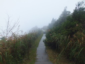 雨霧五分山:五分山稜線步道 (54).JPG