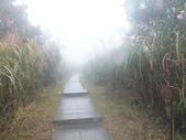 雨霧五分山:五分山稜線步道 (44).JPG