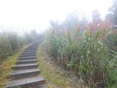 雨霧五分山:五分山稜線步道 (55).JPG