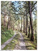 山毛櫸國家步道:018.JPG