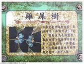 暖東舊道/五分山步道:暖東舊道 (18).JPG