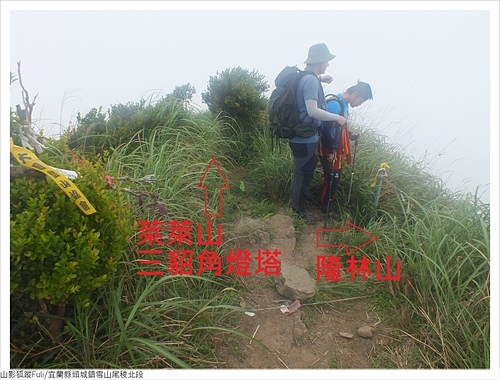 雪山尾稜北段 (26).JPG - 雪山尾稜北段