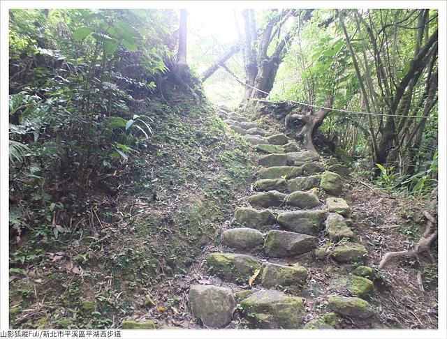 平湖西步道 (4).JPG - 平湖西步道