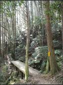 加里山登山步道:加里山 (8).jpg