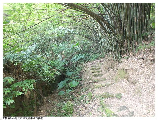 平湖西步道 (6).JPG - 平湖西步道