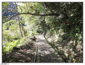 大羅蘭溪步道:大羅蘭溪步道 (17).jpg