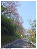 大尖山:大尖山 (1).JPG