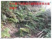 艋舺崙古道:艋舺崙古道 (11).JPG