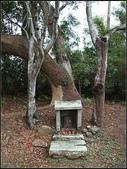 銅鏡山林步道:銅鏡村 (12).jpg
