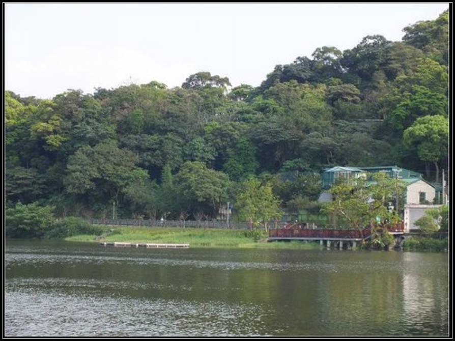 大湖公園:大湖公園 (5).jpg