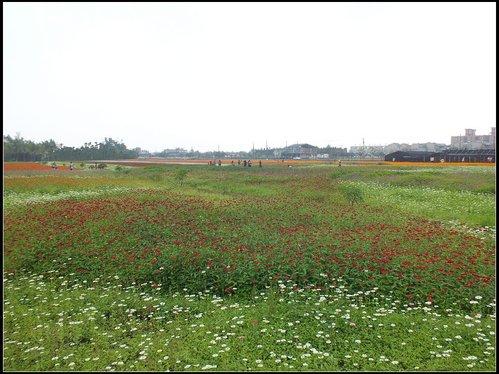 花海、中圳湖 :中圳湖 (2).jpg