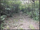 小粗坑聚落、古道 :小粗坑 (12).jpg