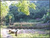 丁蘭谷生態園區 :丁蘭谷 (15).jpg