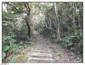平溪步道:平溪步道 (5).jpg