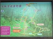 文林古道:文林古道 (19).jpg