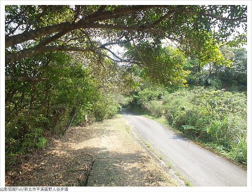 野人谷步道 (52).JPG - 野人谷步道