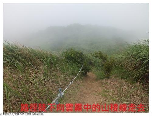 雪山尾稜北段 (99).JPG - 雪山尾稜北段