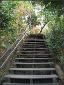半屏山登山步道:半坪山步道 (18).jpg