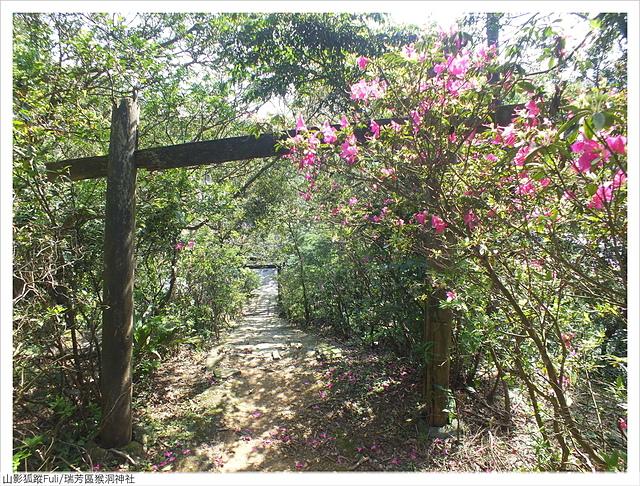 猴洞神社 (23).JPG - 猴洞神社鐘萼木