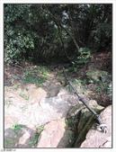 皇帝殿岩稜艷紅花影:皇帝殿岩稜艷紅花影 (106).jpg