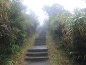 雨霧五分山:五分山稜線步道 (42).JPG