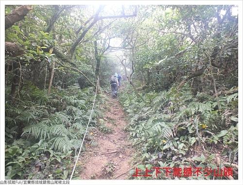 雪山尾稜北段 (8).JPG - 雪山尾稜北段