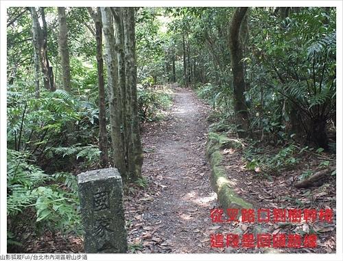 碧山步道 (36).JPG - 碧山步道