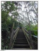 五指山登山步道:五指山登山步道 (6).jpg