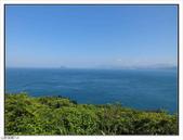 野柳地質公園野百合:野柳地質公園野百合 (14).jpg