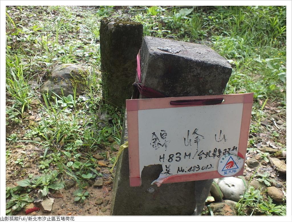 錦峰山 (15).JPG - 五堵荷花