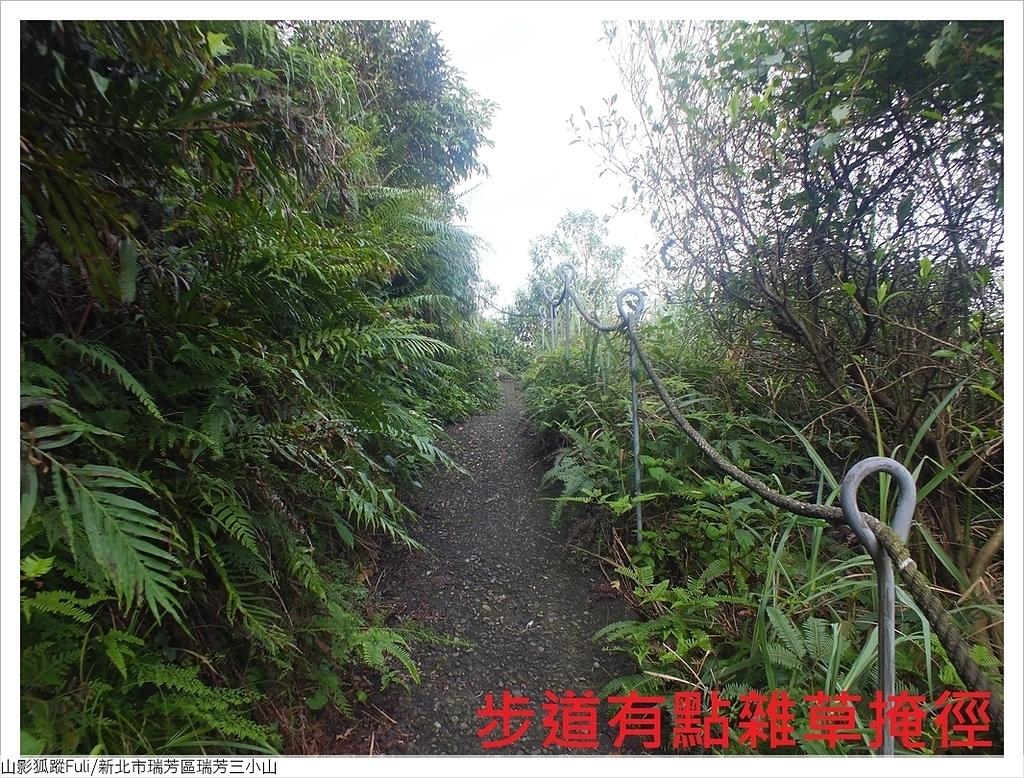 瑞芳三小山 (13).JPG - 瑞芳三小山