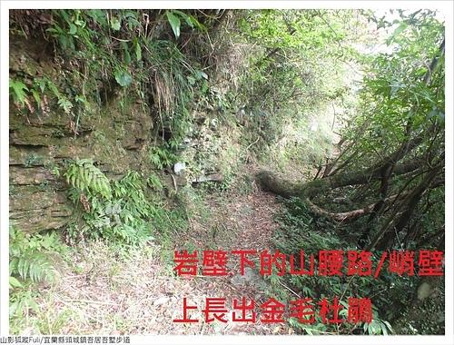 吾居吾墅步道 (64).JPG - 吾居吾墅步道
