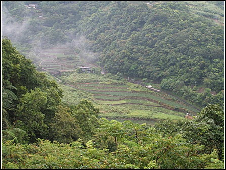 大舌湖步道:大舌湖步道 (30).jpg