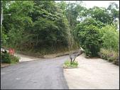 東和步道:東和步道 (3).jpg