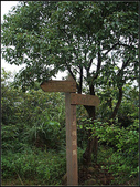 羊稠坑森林步道:羊稠坑步道 (13).jpg