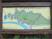 飛龍步道:飛龍步道 (2).jpg
