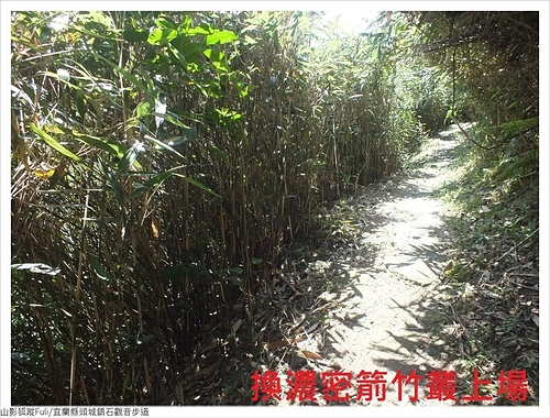 石觀音步道 (42).JPG - 石觀音步道