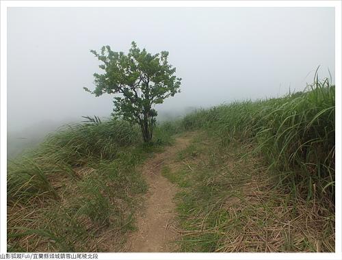 雪山尾稜北段 (98).JPG - 雪山尾稜北段