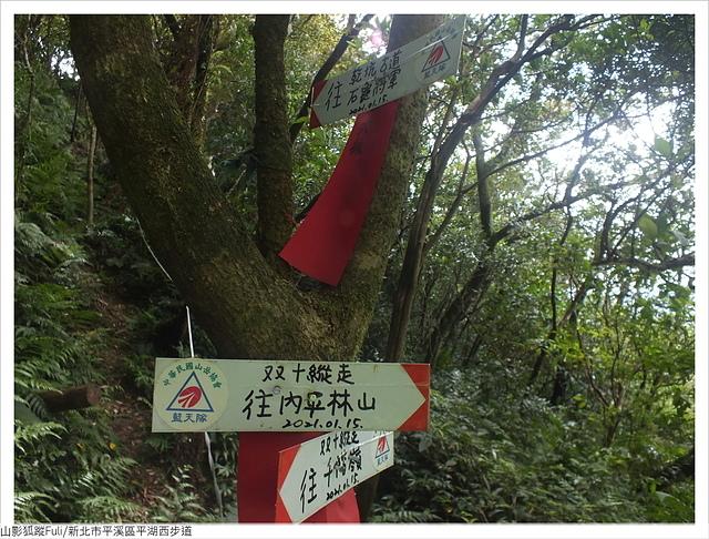 平湖西步道 (31).JPG - 平湖西步道