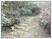 幼坑山、幼坑古道:幼坑山、幼坑古道 (33).jpg