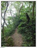 五指山登山步道:五指山登山步道 (56).jpg