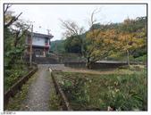 古橋、青楓、流水:古橋、青楓、流水 (6).jpg