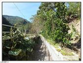 大羅蘭溪步道:大羅蘭溪步道 (5).jpg